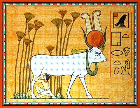 ee0af-hathor-holy-cow