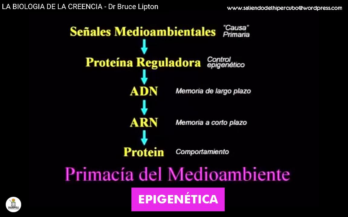 05d Primacia medioambiente